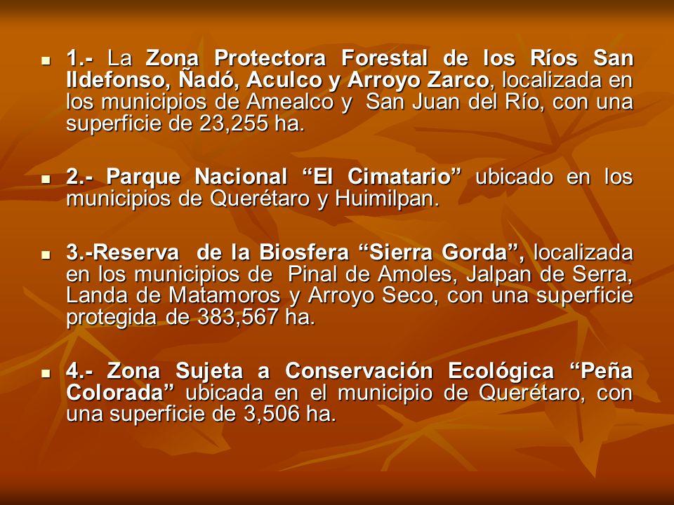 1.- La Zona Protectora Forestal de los Ríos San Ildefonso, Ñadó, Aculco y Arroyo Zarco, localizada en los municipios de Amealco y San Juan del Río, co