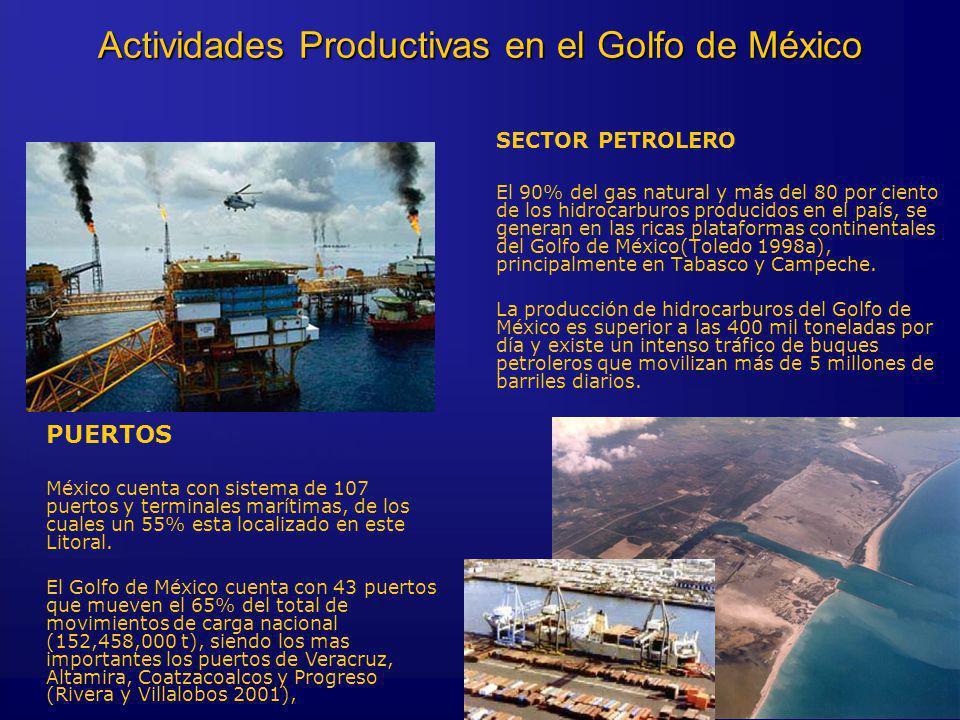 SECTOR PETROLERO El 90% del gas natural y más del 80 por ciento de los hidrocarburos producidos en el país, se generan en las ricas plataformas continentales del Golfo de México(Toledo 1998a), principalmente en Tabasco y Campeche.