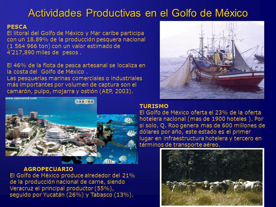 TURISMO El Golfo de México oferta el 23% de la oferta hotelera nacional (mas de 1900 hoteles ). Por si solo, Q. Roo genera mas de 600 millones de dóla