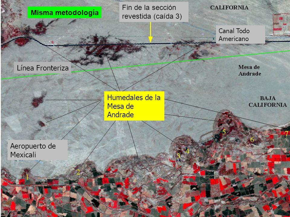 Canal Todo Americano Fin de la sección revestida (caída 3) Humedales de la Mesa de Andrade Aeropuerto de Mexicali Línea Fronteriza 7 Misma metodología