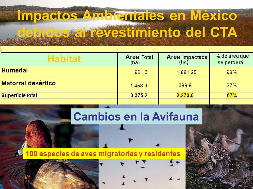 Impactos Ambientales en México debidos al revestimiento del CTA Habitat Area Total (ha) Area Impactada % de área que se perderá Humedal 1,921.31,881.2