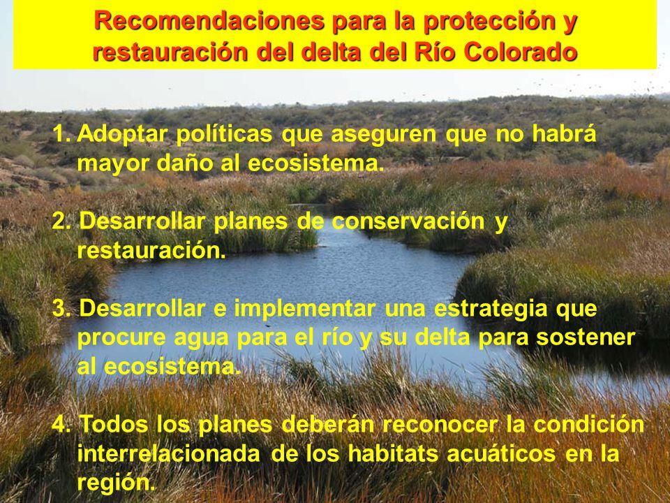 1.Adoptar políticas que aseguren que no habrá mayor daño al ecosistema. 2. Desarrollar planes de conservación y restauración. 3. Desarrollar e impleme