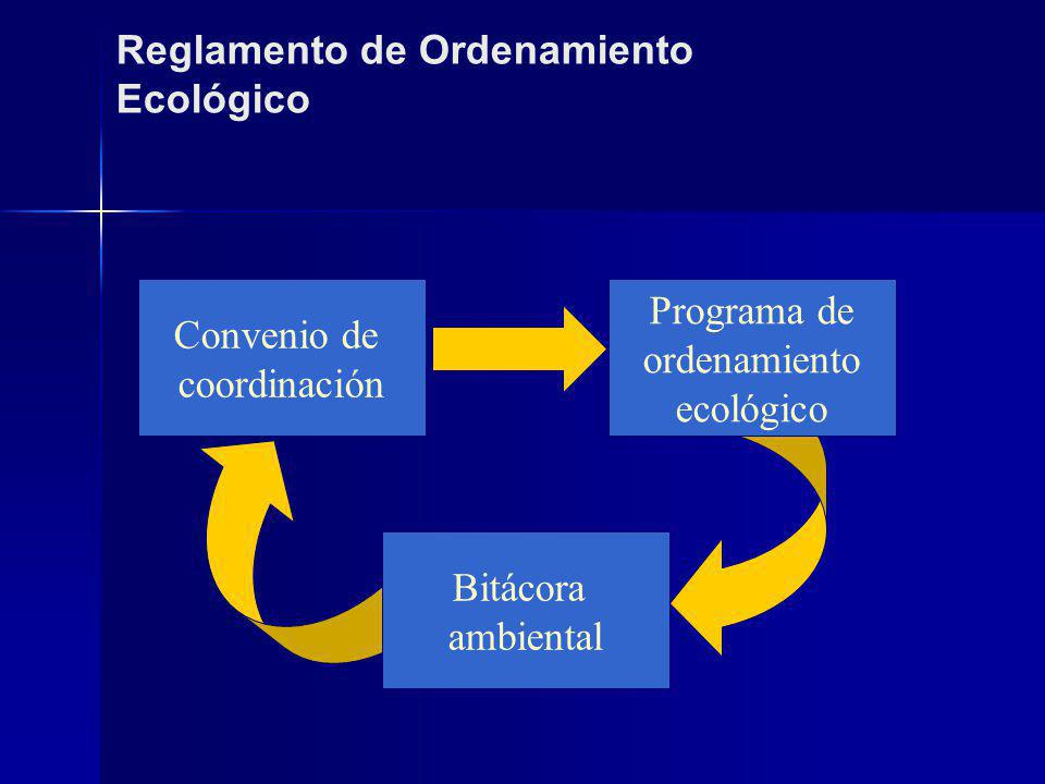 Consejo Consultivo para el Desarrollo Sustentable-NO Administración Pública Federal Estados INVITADOS PERMANENTES Órgano Ejecutivo