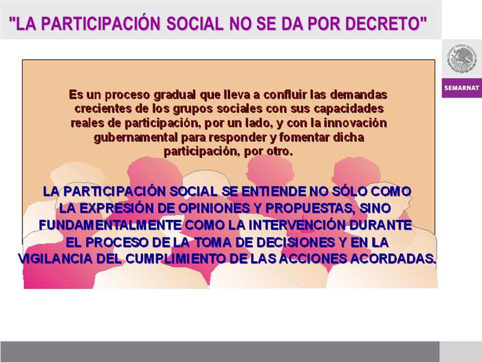 LA PARTICIPACIÓN SOCIAL NO SE DA POR DECRETO