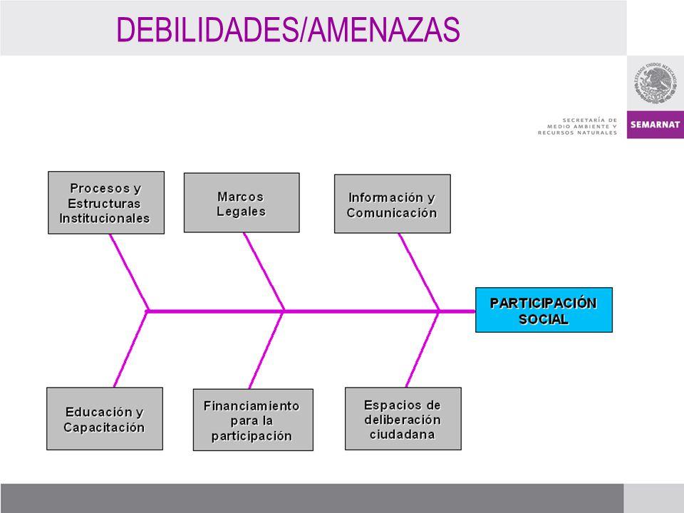 DEBILIDADES/AMENAZAS