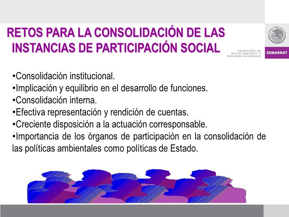 Consolidación institucional. Implicación y equilibrio en el desarrollo de funciones. Consolidación interna. Efectiva representación y rendición de cue