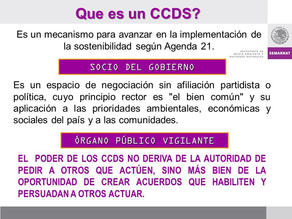Que es un CCDS? Es un mecanismo para avanzar en la implementación de la sostenibilidad según Agenda 21. SOCIO DEL GOBIERNO Es un espacio de negociació