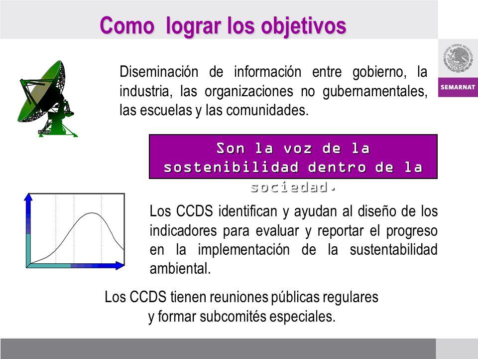 Como lograr los objetivos Diseminación de información entre gobierno, la industria, las organizaciones no gubernamentales, las escuelas y las comunida