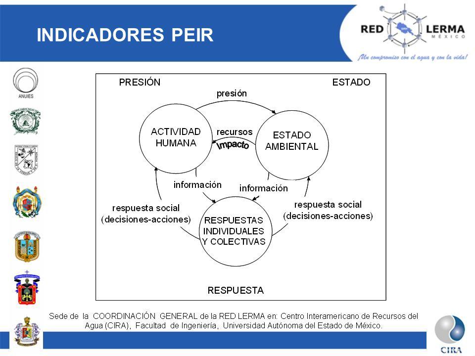 INDICADORES PEIR