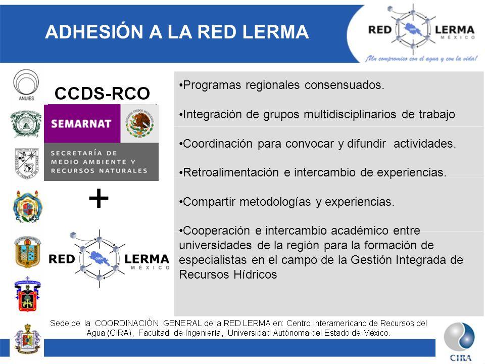 Programas regionales consensuados. Integración de grupos multidisciplinarios de trabajo Coordinación para convocar y difundir actividades. Retroalimen