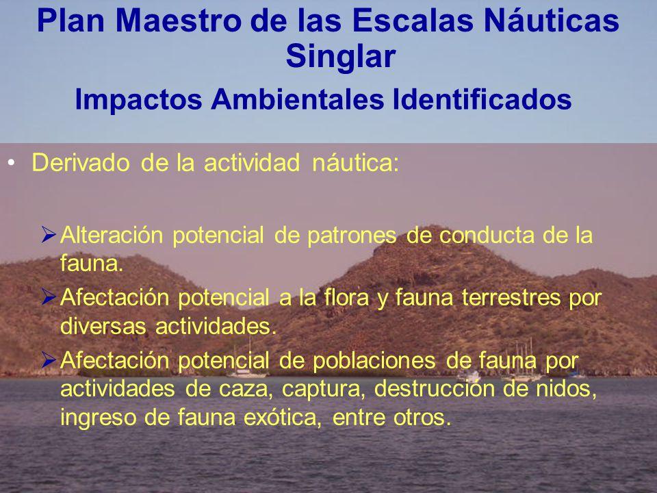 Impactos Ambientales Identificados Derivado de la actividad náutica: Alteración potencial de patrones de conducta de la fauna. Afectación potencial a