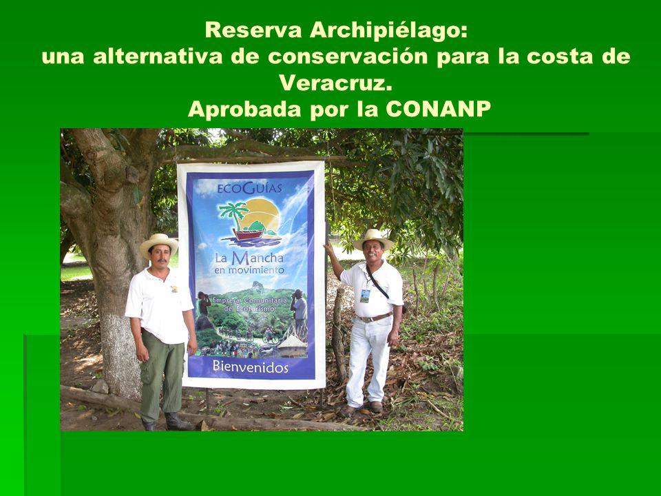 Reserva Archipiélago: una alternativa de conservación para la costa de Veracruz.