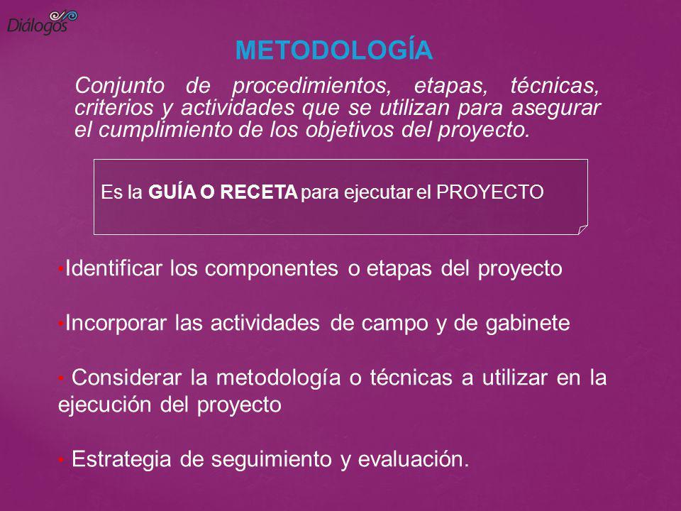 Es la GUÍA O RECETA para ejecutar el PROYECTO METODOLOGÍA Conjunto de procedimientos, etapas, técnicas, criterios y actividades que se utilizan para a