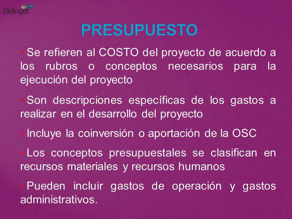 Se refieren al COSTO del proyecto de acuerdo a los rubros o conceptos necesarios para la ejecución del proyecto Son descripciones específicas de los g
