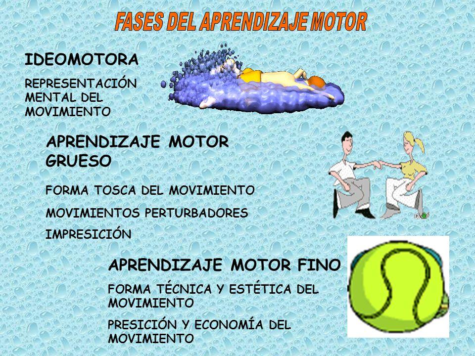 IDEOMOTORA REPRESENTACIÓN MENTAL DEL MOVIMIENTO APRENDIZAJE MOTOR GRUESO FORMA TOSCA DEL MOVIMIENTO MOVIMIENTOS PERTURBADORES IMPRESICIÓN APRENDIZAJE