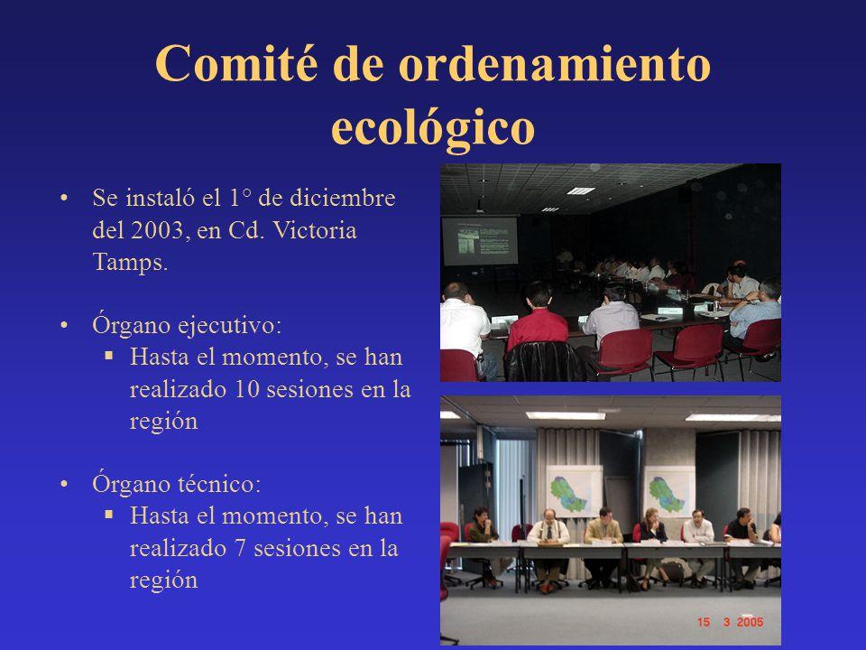 Se instaló el 1° de diciembre del 2003, en Cd. Victoria Tamps. Órgano ejecutivo: Hasta el momento, se han realizado 10 sesiones en la región Órgano té