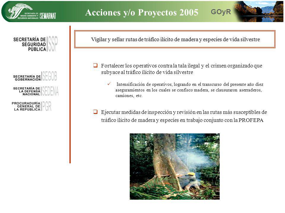Vigilar y sellar rutas de tráfico ilícito de madera y especies de vida silvestre Fortalecer los operativos contra la tala ilegal y el crimen organizad