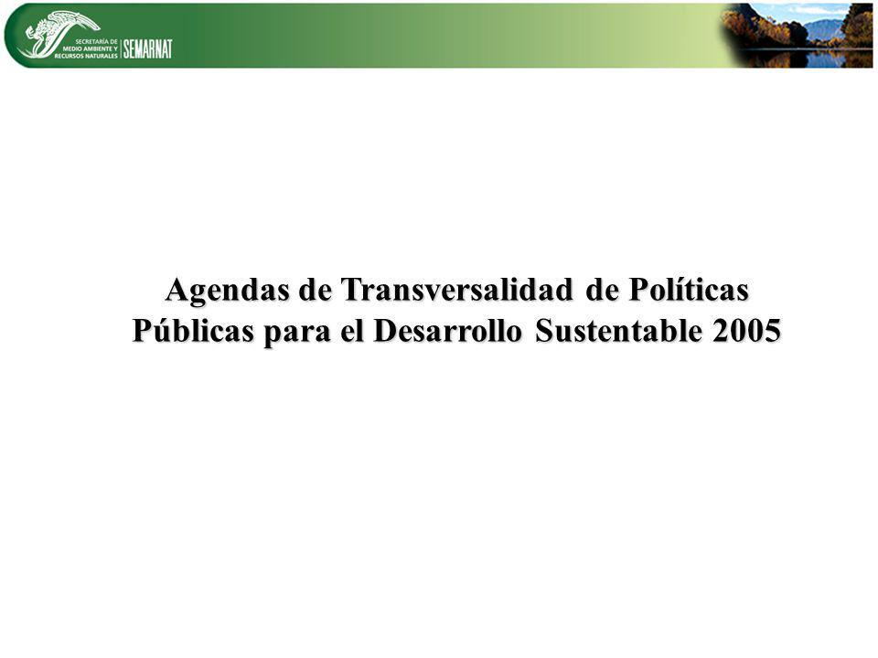 Agendas de Transversalidad de Políticas Públicas para el Desarrollo Sustentable 2005