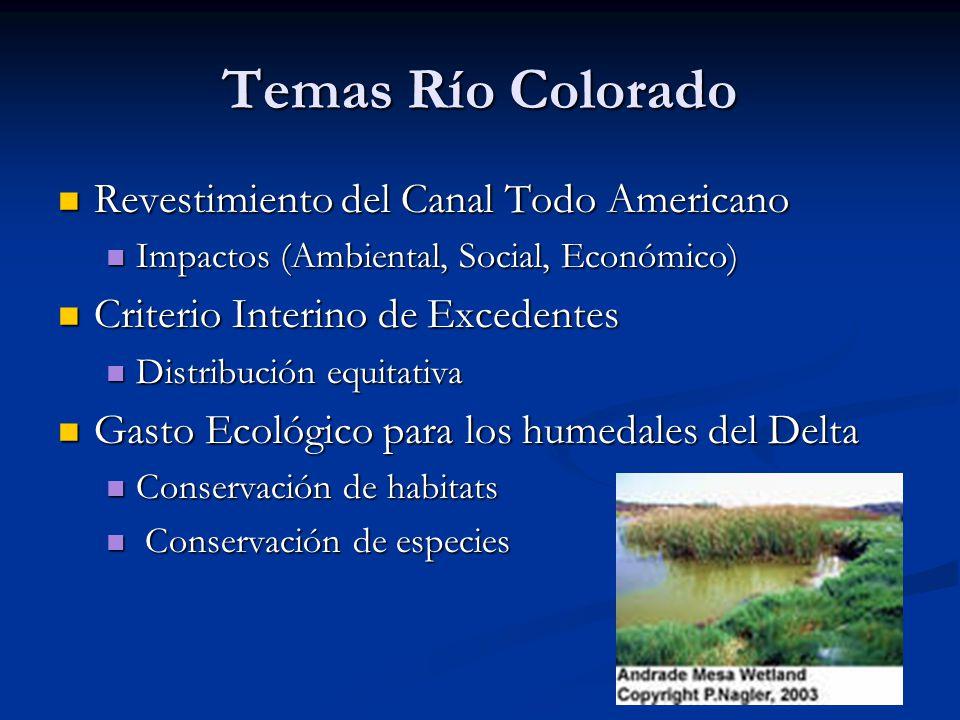 Temas Río Colorado Revestimiento del Canal Todo Americano Revestimiento del Canal Todo Americano Impactos (Ambiental, Social, Económico) Impactos (Amb