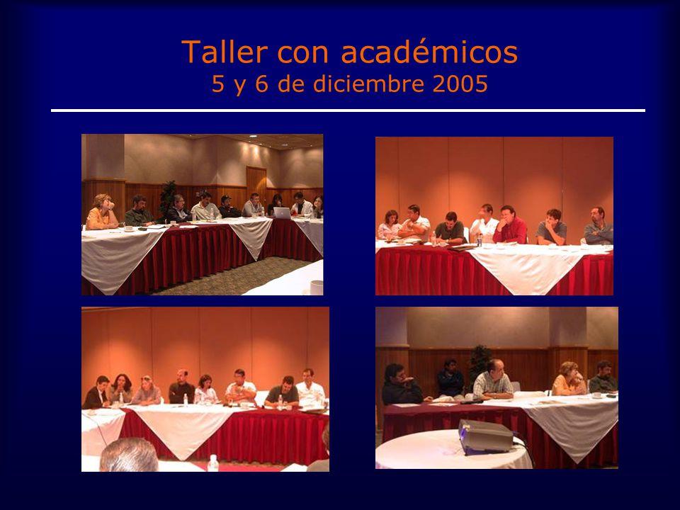 Taller con académicos 5 y 6 de diciembre 2005