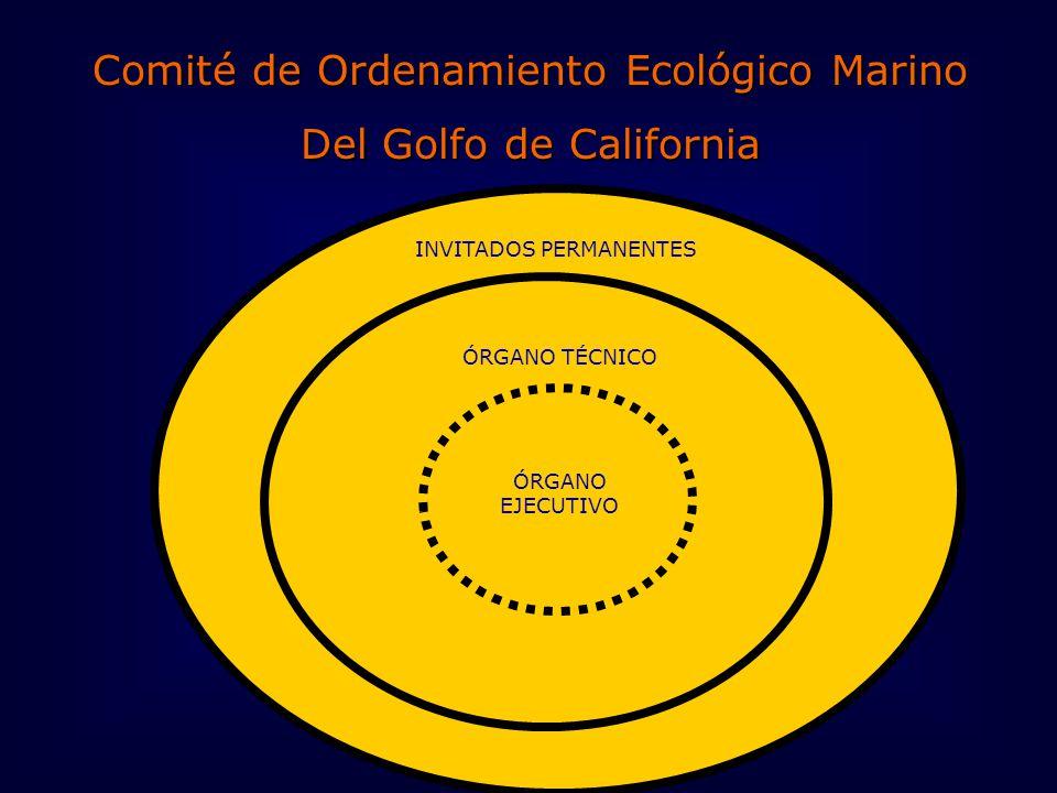 Comité de Ordenamiento Ecológico Marino Del Golfo de California INVITADOS PERMANENTES ÓRGANO EJECUTIVO ÓRGANO TÉCNICO
