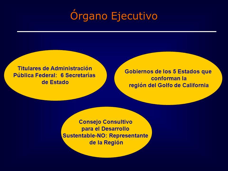Órgano Ejecutivo Titulares de Administración Pública Federal: 6 Secretarías de Estado Gobiernos de los 5 Estados que conforman la región del Golfo de California Consejo Consultivo para el Desarrollo Sustentable-NO: Representante de la Región