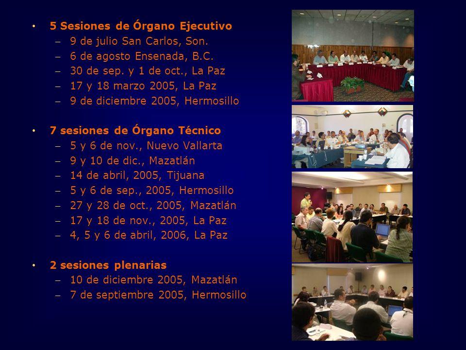 5 Sesiones de Órgano Ejecutivo – 9 de julio San Carlos, Son.