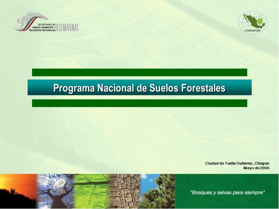 Programa Nacional de Suelos Forestales Ciudad de Tuxtla Gutierrez, Chiapas Mayo de 2005