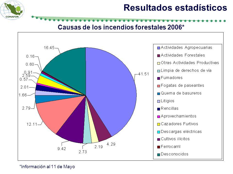 Causas de los incendios forestales 2006* Resultados estadísticos *Información al 11 de Mayo
