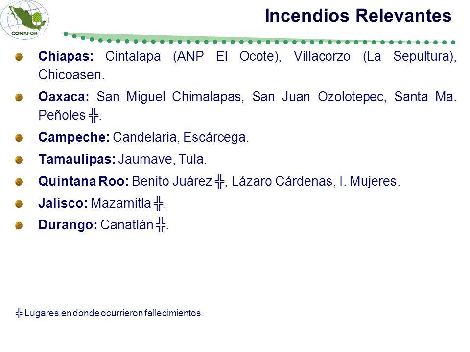Chiapas: Cintalapa (ANP El Ocote), Villacorzo (La Sepultura), Chicoasen.