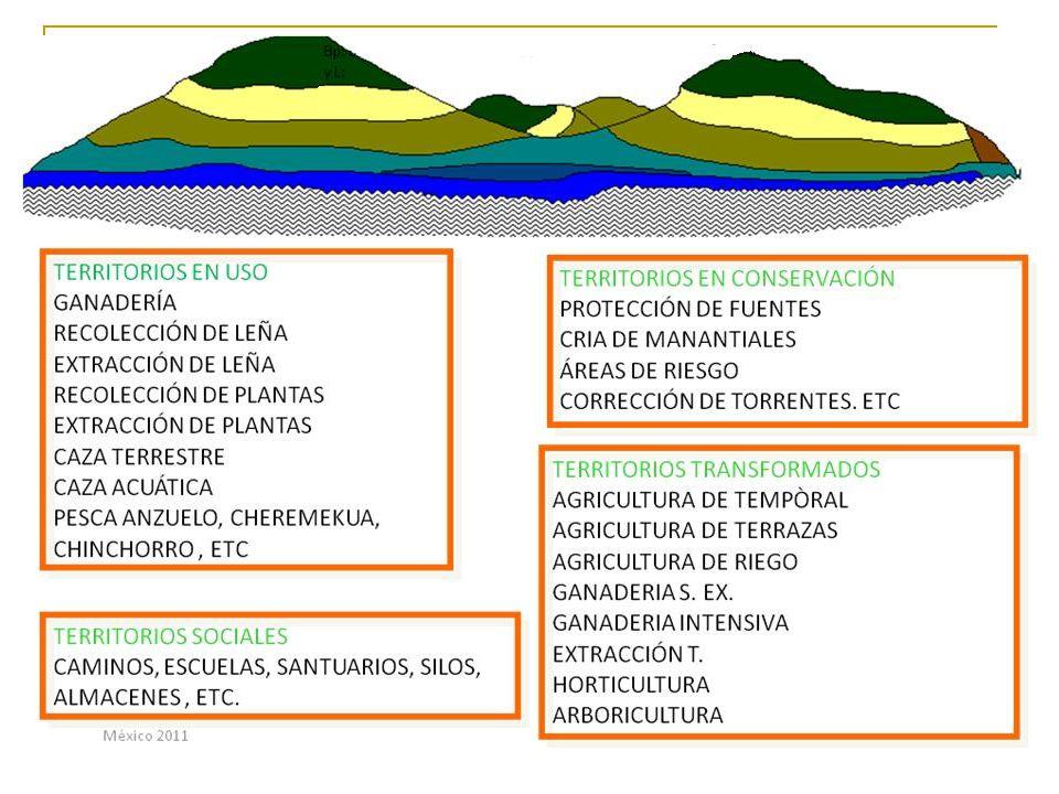 El manejo comunitario del agua en la región centro-montaña de Guerrero Es una gestión integral de la microcuencas que permite el abastecimiento de agua a la comunidad, dentro de las limitaciones económicas y tecnológicas que impone la marginación: Recarga de los manantiales gracias a la reforestación y cuidado de los bosques en las partes altas de la comunidad Limitación de la erosión y aumento de la infiltración gracias a pequeñas obras construidas en barrancas y parcelas (terrazas, represas, etc) Protección de los manantiales Mantenimiento de los sistemas de transporte del agua hacia la comunidad Almacenamiento (en depósitos) Gestión de la red de distribución