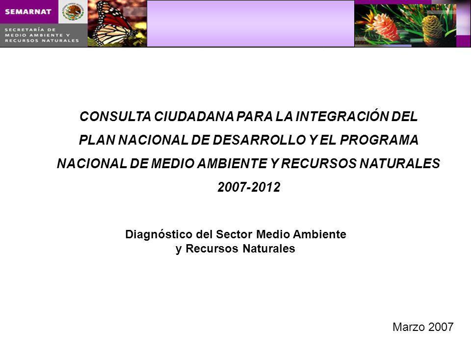 CONSULTA CIUDADANA PARA LA INTEGRACIÓN DEL PLAN NACIONAL DE DESARROLLO Y EL PROGRAMA NACIONAL DE MEDIO AMBIENTE Y RECURSOS NATURALES 2007-2012 Diagnóstico del Sector Medio Ambiente y Recursos Naturales Marzo 2007