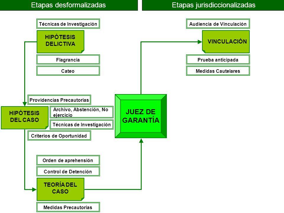 JUEZ DE GARANTÍA HIPÓTESIS DELICTIVA HIPÓTESIS DEL CASO TEORÍA DEL CASO VINCULACIÓN Etapas desformalizadasEtapas jurisdiccionalizadas Técnicas de Inve