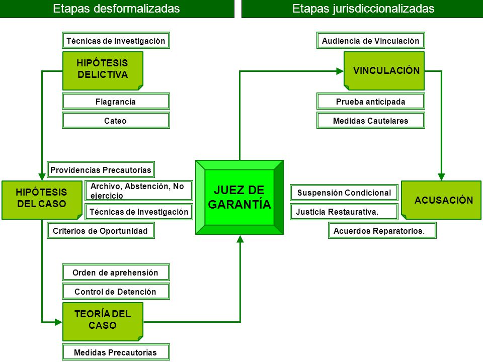 JUEZ DE GARANTÍA HIPÓTESIS DELICTIVA HIPÓTESIS DEL CASO TEORÍA DEL CASO VINCULACIÓN ACUSACIÓN Etapas desformalizadasEtapas jurisdiccionalizadas Técnic