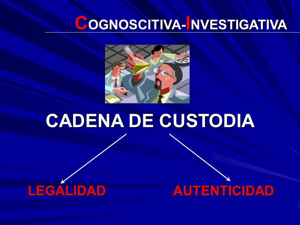 DIBUJO DE EJECUCIÓN TEORÍA DEL CASO PROGRAMA METODOLÓGICO C OGNOSCITIVA- I NVESTIGATIVA