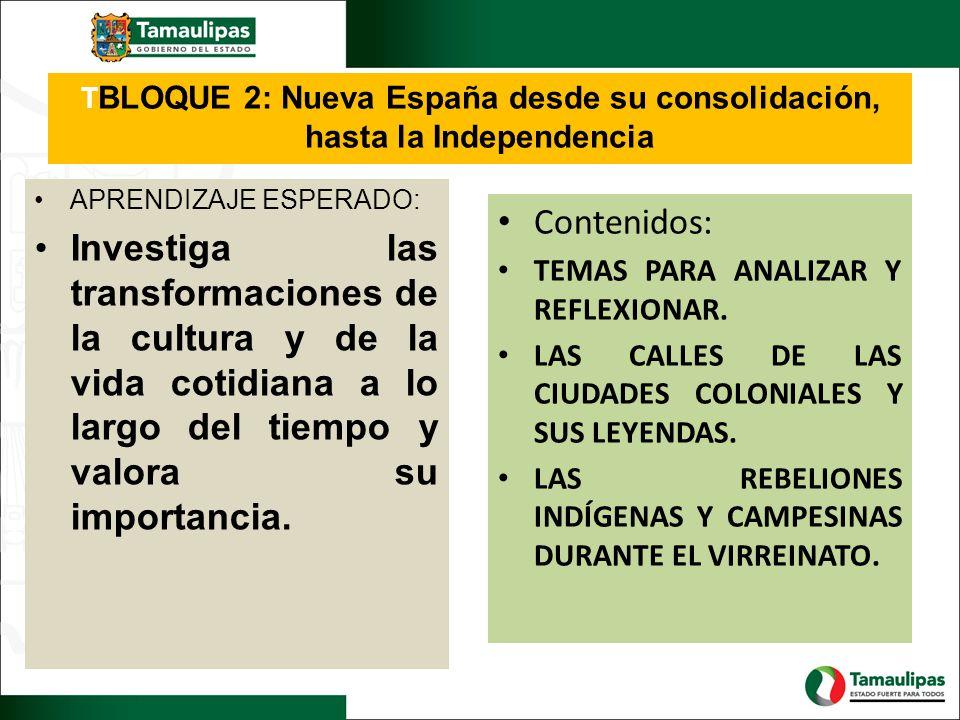 T BLOQUE 2: Nueva España desde su consolidación, hasta la Independencia APRENDIZAJE ESPERADO: Investiga las transformaciones de la cultura y de la vid