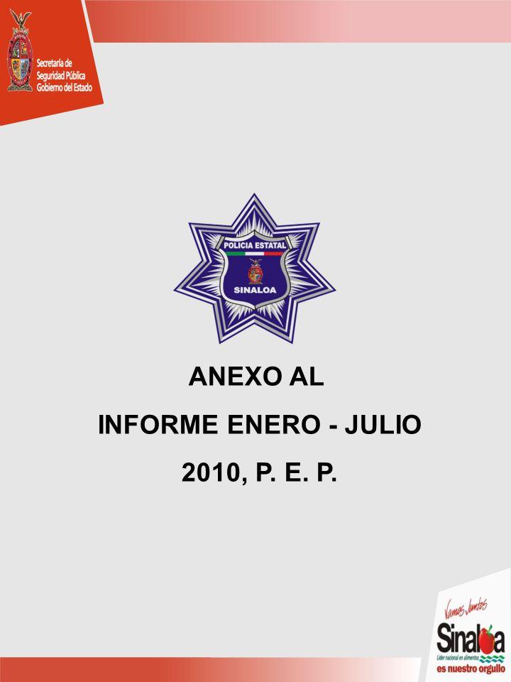 ANEXO AL INFORME ENERO - JULIO 2010, P. E. P.