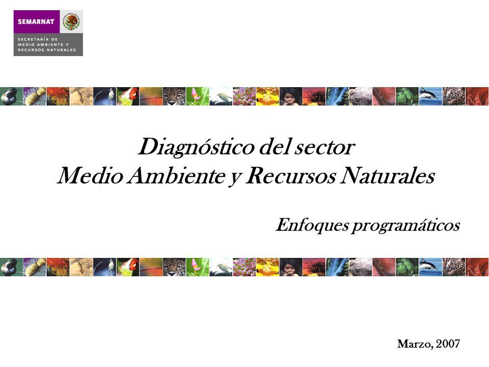 Marzo, 2007 Diagnóstico del sector Medio Ambiente y Recursos Naturales Enfoques programáticos
