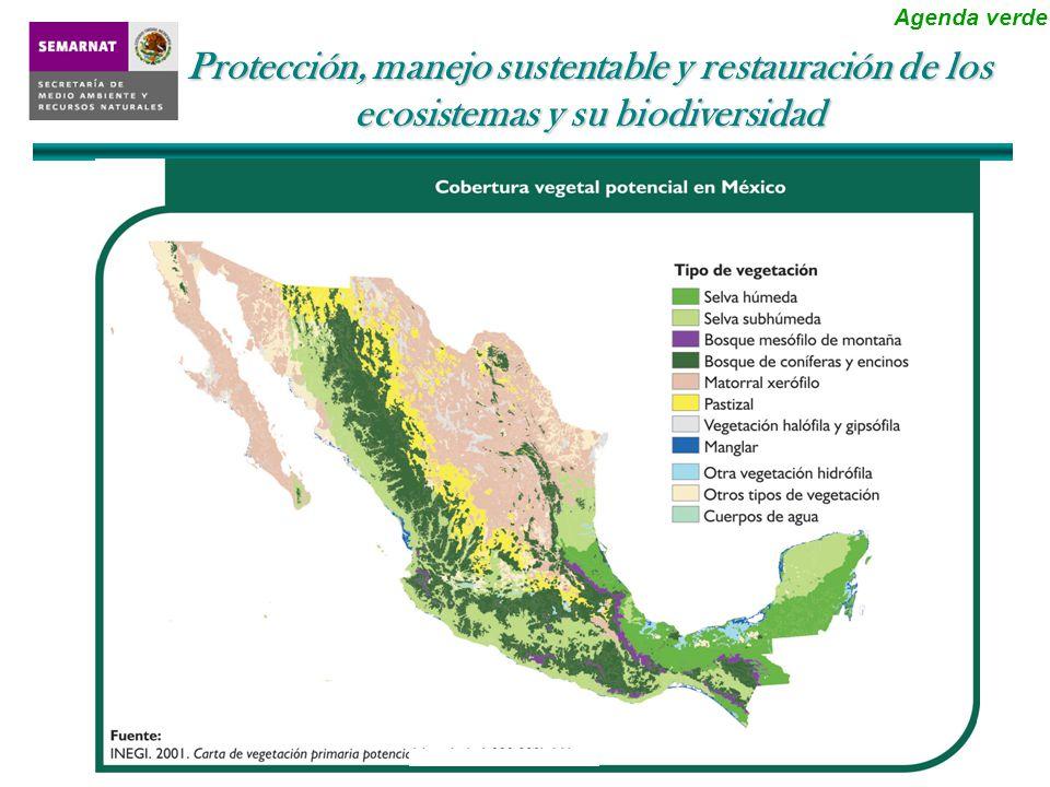 Monitoreo, prevención y remediación de la contaminación ambiental Agenda gris