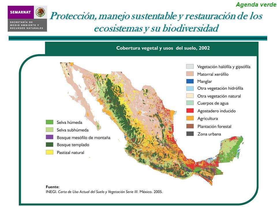 La pérdida de ecosistemas no se ha detenido y tiene una dimensión espacial que debe considerarse Protección, manejo sustentable y restauración de los ecosistemas y su biodiversidad Agenda verde