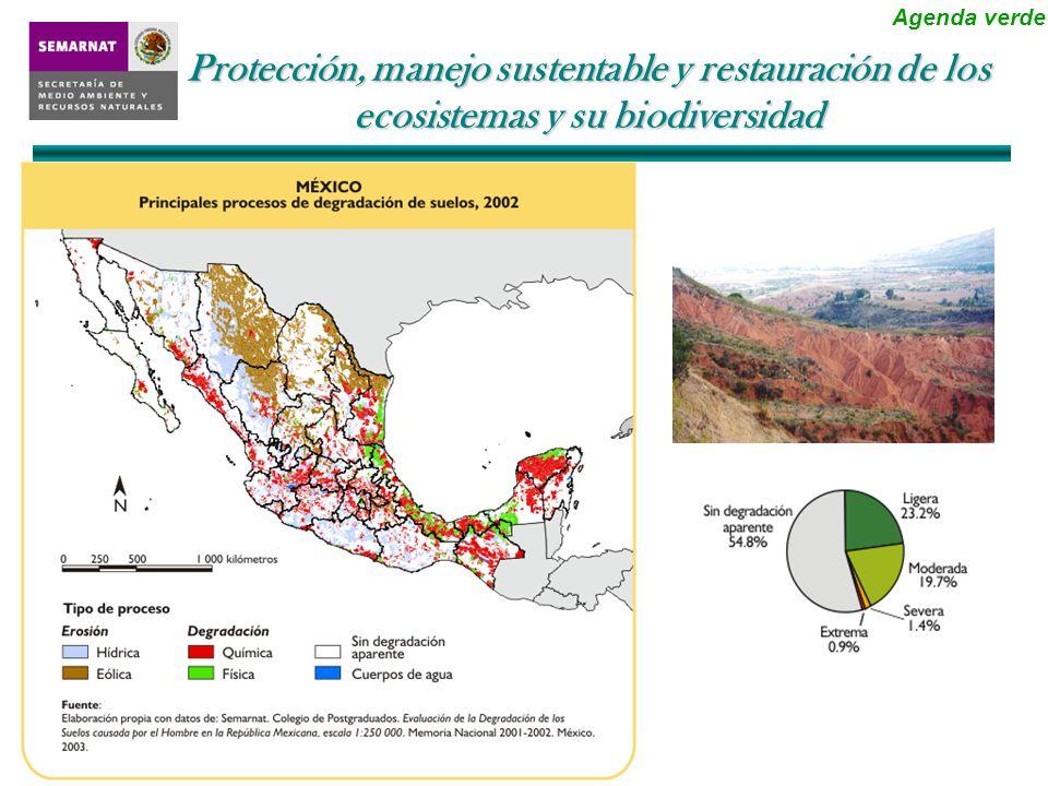 37.72 56.8 Superficie protegida y bajo manejo sustentable (millones de hectáreas) Protección, manejo sustentable y restauración de los ecosistemas y su biodiversidad Agenda verde