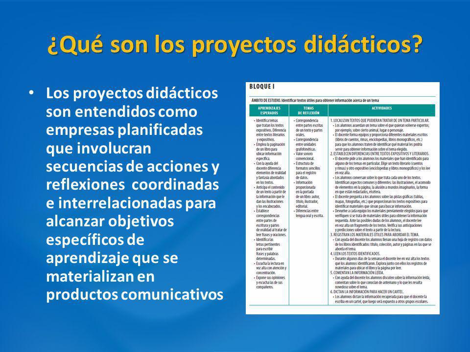 ¿Qué son los proyectos didácticos? Los proyectos didácticos son entendidos como empresas planificadas que involucran secuencias de acciones y reflexio