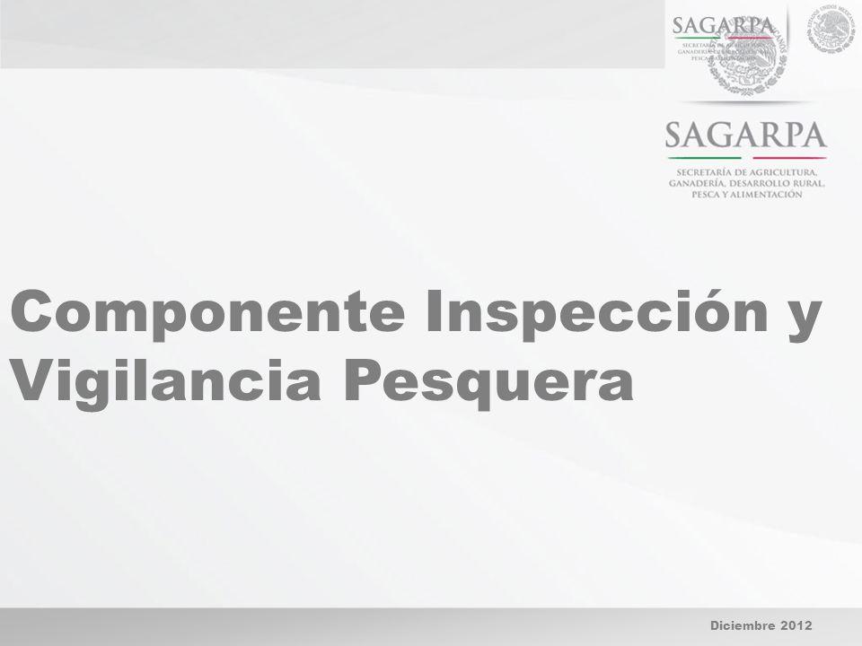 Diciembre 2012 Componente Inspección y Vigilancia Pesquera