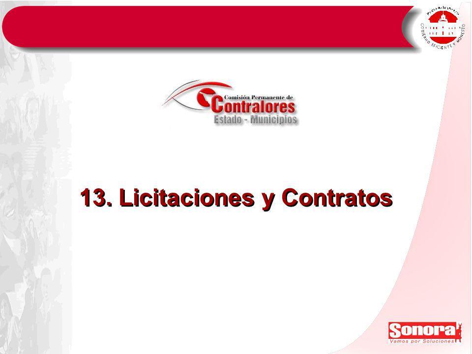 13. Licitaciones y Contratos