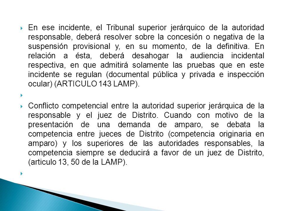 La competencia concurrente en la Constitución Política de los Estados Unidos Mexicanos.