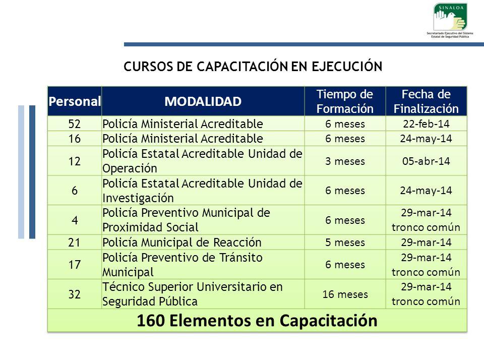 CURSOS DE CAPACITACIÓN EN EJECUCIÓN