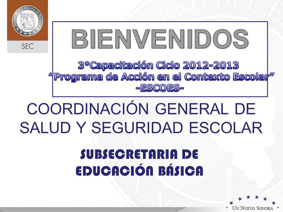 COORDINACIÓN GENERAL DE SALUD Y SEGURIDAD ESCOLAR SUBSECRETARIA DE EDUCACIÓN BÁSICA
