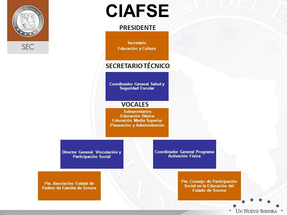 PRESIDENTE SECRETARIO TÉCNICO VOCALES CIAFSE