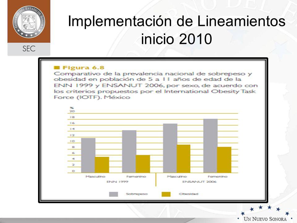 Implementación de Lineamientos inicio 2010