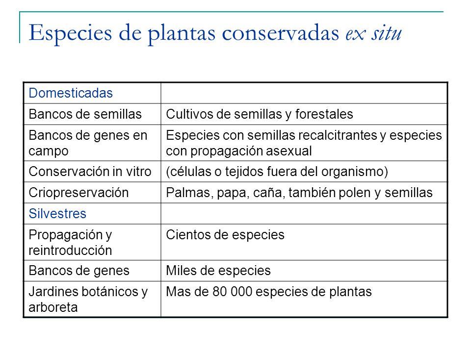 Especies de plantas conservadas ex situ Domesticadas Bancos de semillasCultivos de semillas y forestales Bancos de genes en campo Especies con semilla